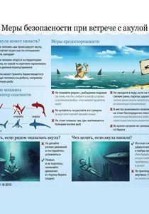Инфограммы о выживании (акулы)