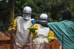 """Статья """"Вирус Эбола - начало конца?"""""""