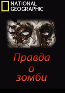 Правда о зомби (2010)